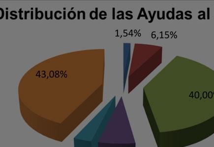 Informe Estadístico Ayudas 2016-2017